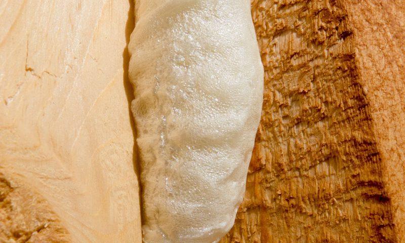 Pianka PUR - drewno